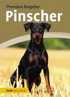 Pinscher (eBook, PDF) - Schmitt, Annette