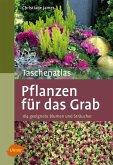 Taschenatlas Pflanzen für das Grab (eBook, PDF)