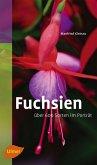 Fuchsien (eBook, ePUB)