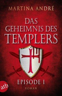 Ein heiliger Schwur / Das Geheimnis des Templers Bd.1 (eBook, ePUB)