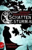 Schattensturm / Druidenchronik Bd.2 (eBook, ePUB)