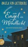 Ein Engel im Mondlicht (eBook, ePUB)