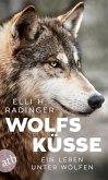 Wolfsküsse (eBook, ePUB)