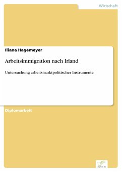 Arbeitsimmigration nach Irland (eBook, PDF) - Hagemeyer, Iliana