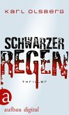 Schwarzer Regen (eBook, ePUB)
