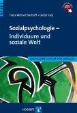Sozialpsychologie - Individuum und soziale Welt (eBook, PDF)