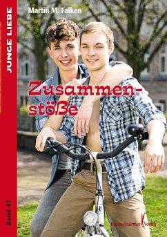 Zusammenstöße (eBook, ePUB) - Falken, Martin M.
