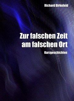 Zur falschen Zeit am falschen Ort (eBook, ePUB) - Birkefeld, Richard