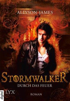 Durch das Feuer / Stormwalker Bd.2