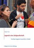 Jugend in der Zivilgesellschaft (eBook, ePUB)