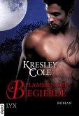 Flammen der Begierde / The Immortals After Dark Bd.8 (eBook, ePUB)