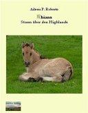Rhiann - Sturm über den Highlands (eBook, ePUB)