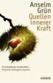 Quellen innerer Kraft (eBook, ePUB)