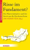 Risse im Fundament (eBook, ePUB)