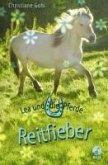 Reitfieber / Lea und die Pferde Bd.7 (eBook, ePUB)