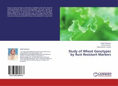 Study of Wheat Genotypes by Rust Resistant Markers