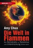 Die Welt in Flammen (eBook, ePUB)