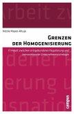 Grenzen der Homogenisierung (eBook, PDF)