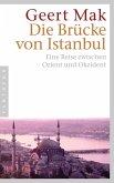 Die Brücke von Istanbul (eBook, ePUB)