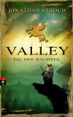 Valley (eBook, ePUB)