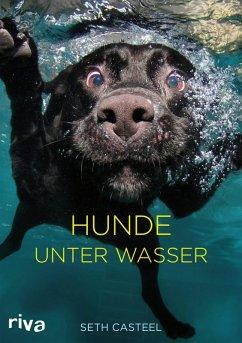 Hunde unter Wasser (eBook, ePUB) - Casteel, Seth