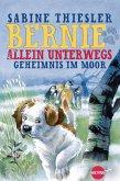 Geheimnis im Moor / Bernie allein unterwegs Bd.2 (eBook, ePUB)