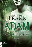 Adam / Schattenwandler Bd.6 (eBook, ePUB)