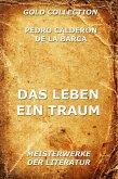 Das Leben ein Traum (eBook, ePUB)