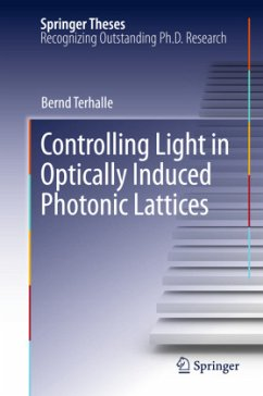Controlling Light in Optically Induced Photonic Lattices - Terhalle, Bernd