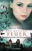 Das heilige Feuer / Die Schwestern der Dunkelheit Bd.2 (eBook, ePUB)