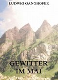 Gewitter im Mai (eBook, ePUB)