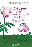 Stulpen und Buschwindhöschen (eBook, ePUB)