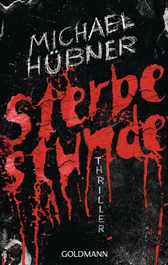 Sterbestunde (eBook, ePUB) - Hübner, Michael