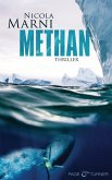 METHAN (eBook, ePUB)