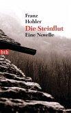 Die Steinflut (eBook, ePUB)