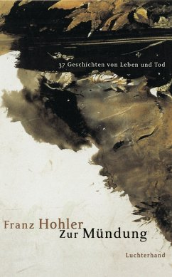 Zur Mündung (eBook, ePUB) - Hohler, Franz