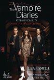 Nebel der Vergangenheit / The Vampire Diaries. Stefan´s Diaries Bd.4 (eBook, ePUB)