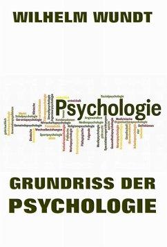 Grundriss der Psychologie (eBook, ePUB)