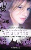 Das Geheimnis des Amuletts / die Schwestern der Dunkelheit Bd.4 (eBook, ePUB)