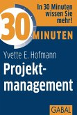 30 Minuten Projektmanagement (eBook, PDF)