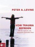 Vom Trauma befreien (eBook, ePUB)
