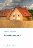 Mittelschicht unter Druck? (eBook, ePUB)