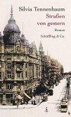 Straßen von gestern (eBook, ePUB)