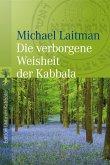 Die verborgene Weisheit der Kabbala (eBook, ePUB)
