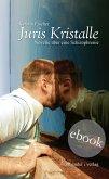 Juris Kristalle. Novelle über eine Schizophrenie (eBook, ePUB)