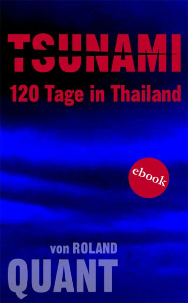 TSUNAMI - 120 Tage in Thailand (eBook, ePUB) - Quant, Roland