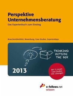 Perspektive Unternehmensberatung 2013 (eBook, ePUB)