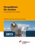Perspektiven für Juristen 2013 (eBook, ePUB)