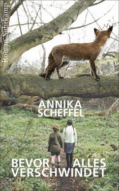 Bevor alles verschwindet (eBook, ePUB) - Scheffel, Annika