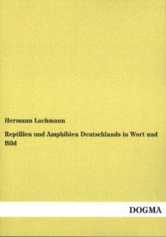 Reptilien und Amphibien Deutschlands in Wort und Bild - Lachmann, Hermann